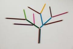 Покрашенный карандаш формируя дерево Стоковые Фотографии RF
