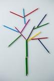 Покрашенный карандаш формируя дерево Стоковое фото RF