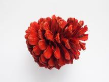 Покрашенный конус сосны красного цвета стоковые фото