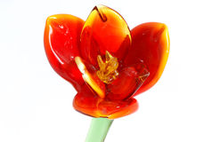 покрашенный крупный план цветет стеклянный сувенир isolat Стоковые Изображения