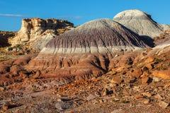 Покрашенный национальный парк леса неплодородных почв пустыни окаменелый стоковая фотография rf