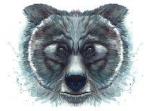 Покрашенный рисуя медведь хищника акварели животный Стоковое Фото