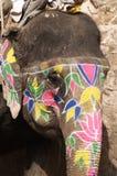 покрашенный слон стоковое изображение