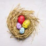 Покрашенный с сторонами яичек членов семьи декоративных для пасхи, в конце взгляд сверху предпосылки гнезда деревянном деревенско Стоковые Фотографии RF