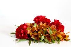 Покрашенный цветок для любого случая стоковое изображение rf