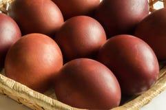Покрашенный цыпленок коричневых яичек Покрашенная кожа лука Пасха Стоковые Фотографии RF