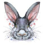 Покрашенный чертеж с портретом акварели животного млекопитающегося зайца кролика в цветах кровати Стоковые Фотографии RF