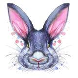 Покрашенный чертеж с портретом акварели животного млекопитающегося зайца кролика в ярких цветах Стоковое Изображение