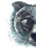 Покрашенный чертеж с портретом типографии акварели головы медведя Стоковое Изображение
