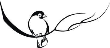 покрашенный bullfinch бесплатная иллюстрация