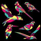 4 покрашенных птицы Стоковое Изображение RF