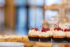 Покройте вполне пирожных с сливк и вишней на верхней части Стоковые Фото