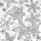 Покройте краской австралийские родные цветки орхидей Безшовная картина в контуре r иллюстрация вектора