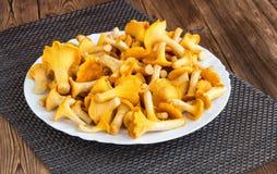 Покройте с лисичками грибов на деревянной предпосылке, подосиновике стоковые изображения rf