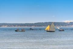 Покройте фретку, Францию, взгляд над дюной Pyla Стоковые Изображения RF