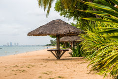 Покрыванные соломой зонтики на пляже Стоковое фото RF