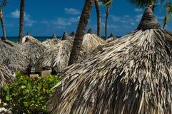 Покрыванный соломой зонтик palapa frond ладони на красивом пляже стоковые фото