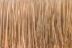 Покрывать предпосылку предпосылки, сена или сухой травы крыши Стоковые Фотографии RF