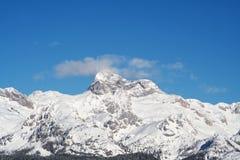 покрынный снежок гор Стоковая Фотография RF