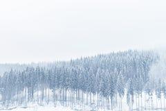 покрытая зима сказа снежка дома fairy пущи деревянная Стоковая Фотография