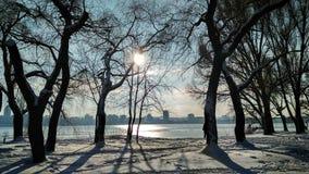 покрытая зима сказа снежка дома fairy пущи деревянная стоковые фото