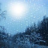 покрытая зима сказа снежка дома fairy пущи деревянная Стоковое Изображение RF