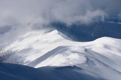 покрытая зима спруса снежка сосенки горы ландшафта Стоковое Изображение