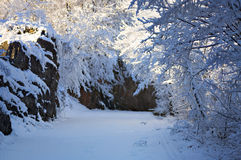 покрытая, котор замерли зима валов улицы снежка дороги nigth светильника Стоковая Фотография RF