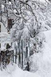 покрытая Снег дверь калитки стоковая фотография rf