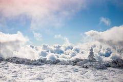 покрытая Снег ель в горах зимы Стоковое Изображение