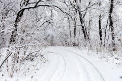 покрытая Снег дорога колейности в лесе Стоковые Изображения RF