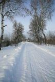 покрытая Снег проселочная дорога стоковое фото rf