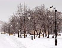 покрытая Снег улица города Стоковая Фотография