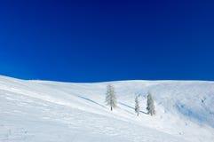 покрытая уединённая долина вала снежка Стоковое Изображение RF