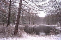 Покрытие зимы Стоковые Фото