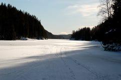 покрытое озеро льда Стоковые Изображения RF