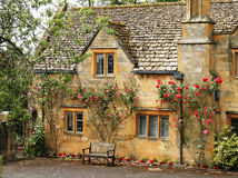 покрытое село дома розовое Стоковые Изображения