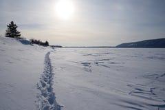 покрытое Снег река Волга на солнечном дне стоковая фотография rf
