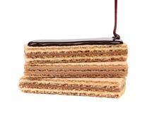 Покрытые вафли кола шоколада Стоковые Изображения