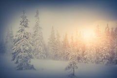 покрытые валы снежка гор горы дома hoarfrost стоковое изображение rf