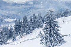 покрытые валы снежка гор горы дома hoarfrost стоковая фотография