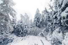 покрытые валы снежка гор горы дома hoarfrost стоковое изображение