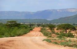 покрытые Джунгл горы. Африка, Эфиопия. Природа ландшафта. Стоковая Фотография RF