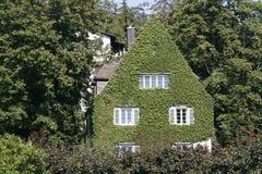 покрытые листья дома стоковые фотографии rf