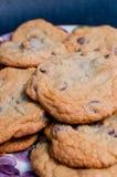 Покрытые печенья Стоковое Изображение RF