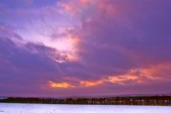 покрытые Снег деревья в холмах снега Стоковое фото RF