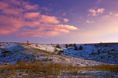 покрытые Снег деревья в холмах снега стоковое изображение rf