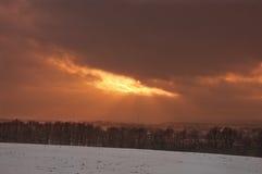 покрытые Снег деревья в холмах снега стоковые изображения