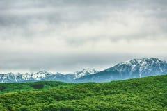 покрытые Снег прикарпатские горы стоковое фото