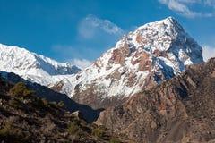покрытые Снег саммиты гор Таджикистана стоковая фотография